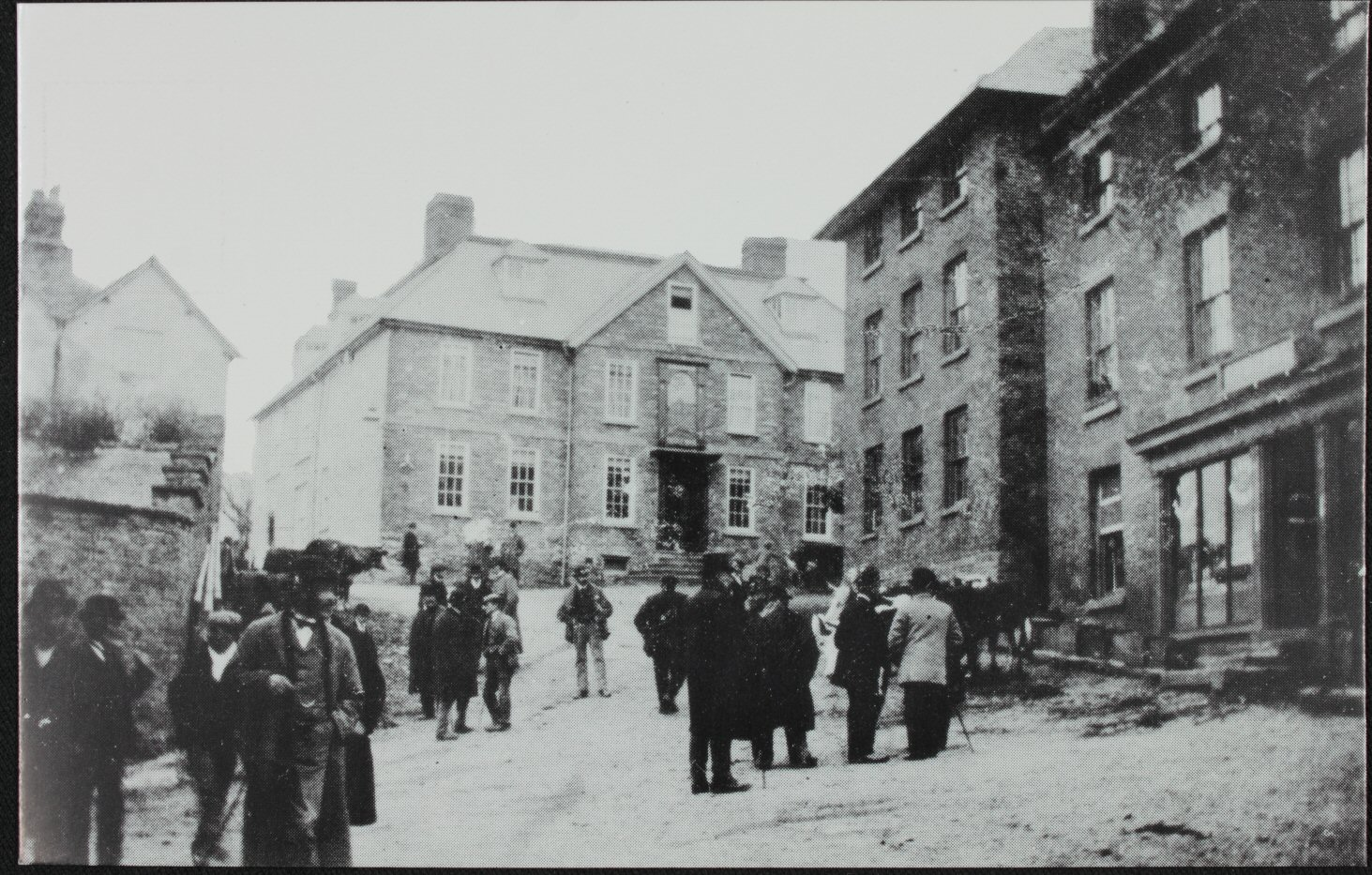 Cattle for Sale in the Street 1900
